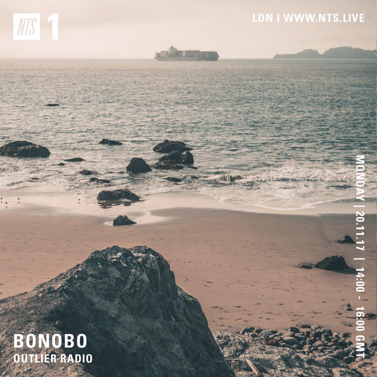 bonobo outlier.jpg