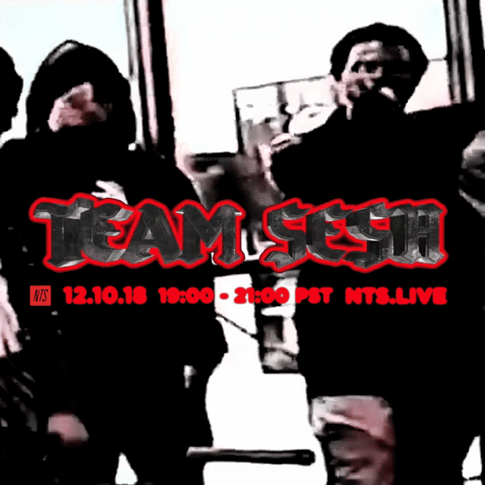 Teamsesh-NTS-12.10.18-Artwork-Still.png