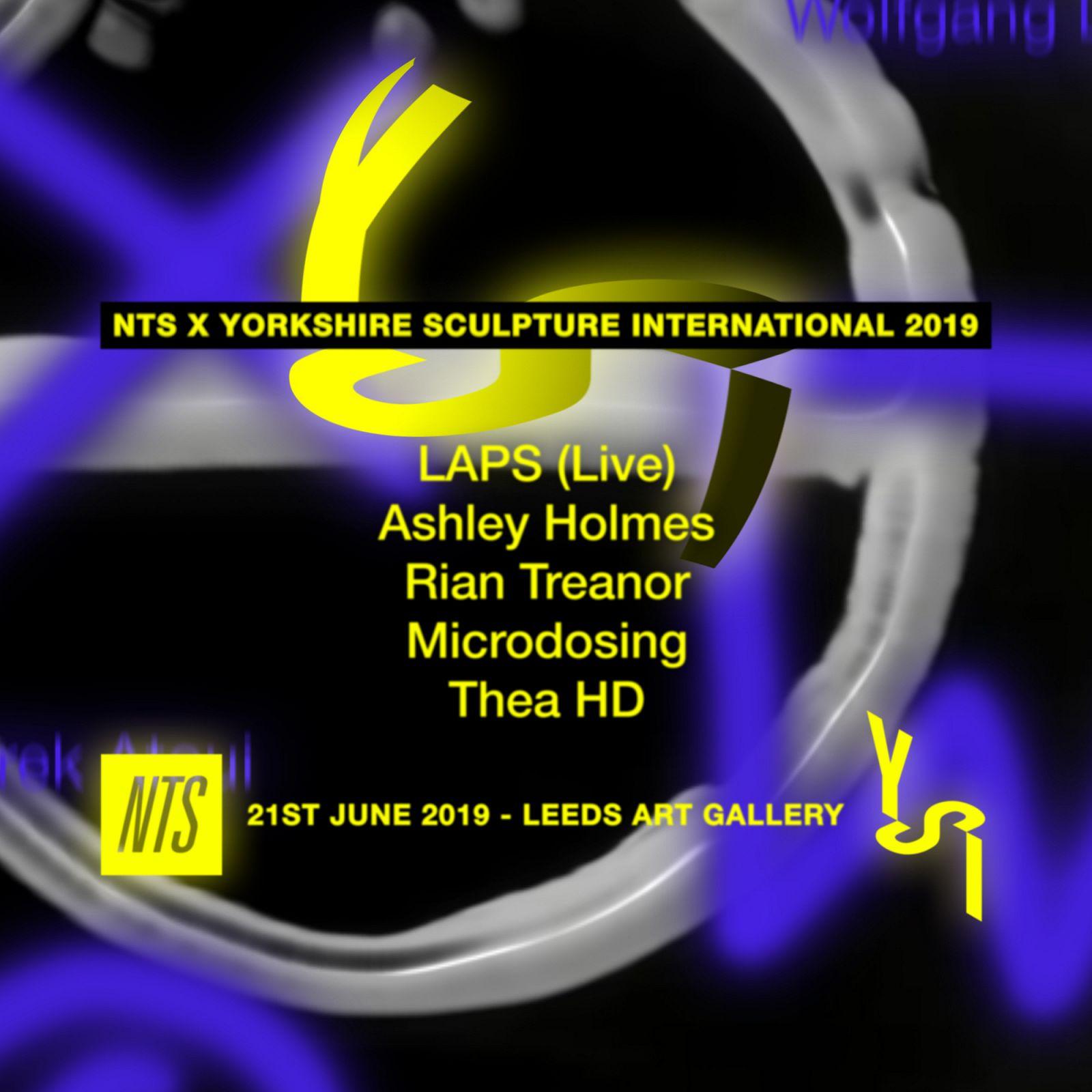 Still - NTS x Yorkshire Sculpture International 2019.jpg