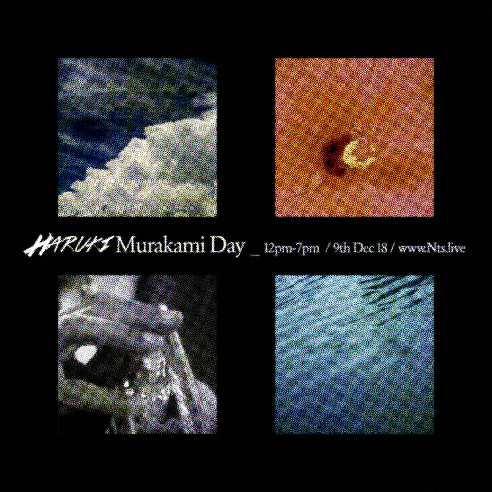Haruki Murakami Day   NTS