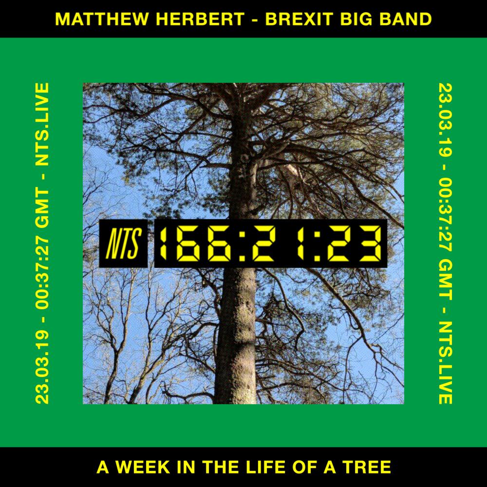 Still - Mathew Herbert _ Brexit Big Band - A Week in the Life of a Tree - NTS.jpg