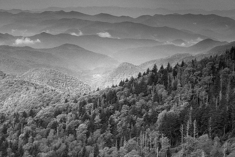 Death Is Not The End - Appalachian Folk Special